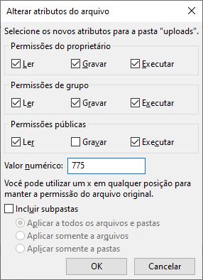 Configurações de permissão para resolver o erro ao fazer upload de imagens